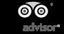 brands-tripadvisor-70.png